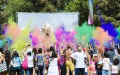 Festival Ushers Vivid & Bright Colors