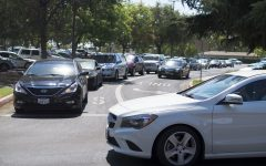 Rams in Distress Over Parking