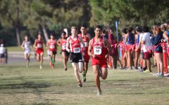 Cross Country Focusing on Pace for Season