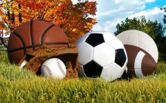 Fall Semester Sports Roundup